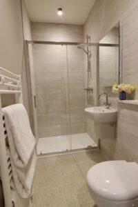 Standard Room Shower 2